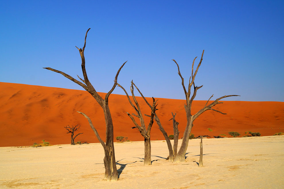 Red dune of Sossusvlei